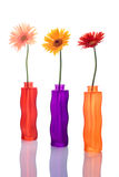 Three gerbera flowers in colorful vases Stock Photography