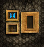 Three gilded frames on antique wallpaper Royalty Free Stock Photos
