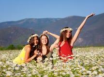 Three girls on camomile field Stock Photos