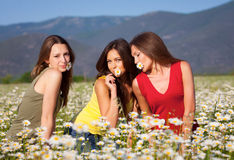 Three girls on camomile field Stock Photos
