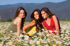 Three girls on camomile field Royalty Free Stock Photo