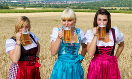 Three girls drinking beer. Three beautiful girls in dirndl drinking beer Stock Images