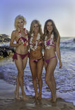 Three girls at a hawaii beach. Three girls in bikinis at a hawaii beach wearing flower leis Royalty Free Stock Image