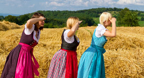 Free Three Girls In Dirndl Royalty Free Stock Images - 26153959