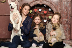 Three girls with puppies Stock Photo