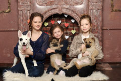 Three girls with puppies Royalty Free Stock Photos