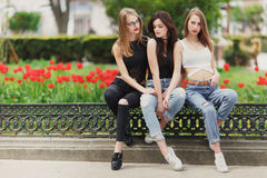 Three girls sit on the park background royalty free stock photography