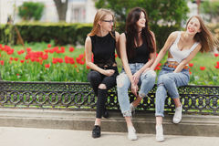 Three girls sit on the park background royalty free stock image