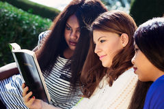 Three Girls Studying the Bible Together Stock Photo