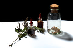 Three glass bottles with herbal extracts and dried herbs Royalty Free Stock Photography