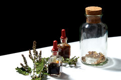Three glass bottles with herbal extracts and patchouli branch Stock Photos