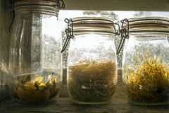 Three glass jars with paste Stock Images