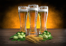 Three glasses of beer with barley and hops. 3D render Stock Photography