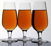 THREE GLASSES OF CALVADOS royalty free stock images