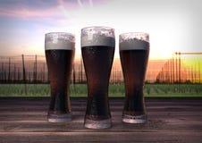 Three glasses of dark beer with hop-garden background - 3D render Stock Image