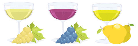 Grape and fruit wines. vector set. Three glasses with grape and fruit wines. vector set Stock Image