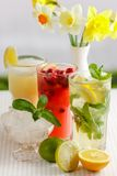 Three glasses of refreshing drink Mohito. Classic mint, cranberry and orange on a table with slices of lemon, lime, a bowl with ice and yellow flowers Royalty Free Stock Images