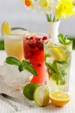 Three glasses of refreshing drink Mohito. Classic mint, cranberry and orange on a table with slices of lemon, lime, a bowl with ice and yellow flowers Stock Images
