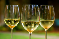 Three Glasses of White Wine. Three freshly poured glasses of white wine with legs showing. Yellow and green in overall color, the image is of a happy hour Stock Photography