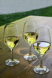 Three glasses of white wine Stock Image