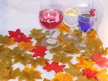 Three glasses of wine. Red blue and white set among colourful autumn leaves Royalty Free Stock Photo