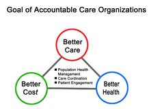 Goal of Accountable Care Organizations. Three Goals of Accountable Care Organizations stock illustration