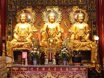 Three Goden chinese Buddha Royalty Free Stock Photo