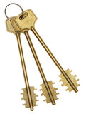 Three gold keys Royalty Free Stock Images
