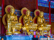 Three gold painted Chinese art Buddha statues in Thailand. Stock Photo
