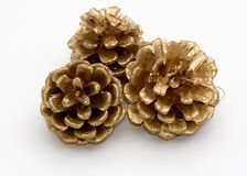 Three gold pine cones Stock Images