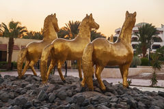 Three gold statue of a horse on a background of palm trees Stock Photography