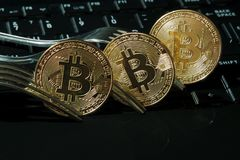 Three golden bitcoins with forks. Stock Photo