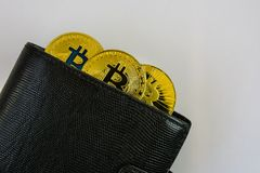 Three golden bitcoins lie in black leather wallet closeup. On white bckground Royalty Free Stock Image