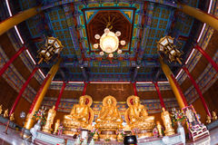 Three golden buddha. Super Wide Angle of three golden buddha Royalty Free Stock Images