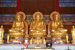 Three golden buddha state Stock Images