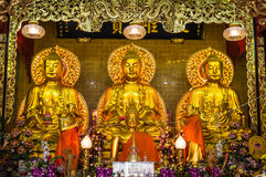 Three golden buddha statue. In Chinese temple,Thailand Royalty Free Stock Images