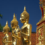 Three Golden Buddhas against a blue sky Stock Images