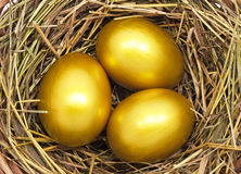 Three golden eggs Royalty Free Stock Photos