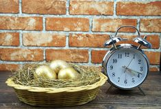 Three golden eggs in the basket royalty free stock photos