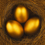 THREE GOLDEN EGGS IN BIRDS NEST Stock Images