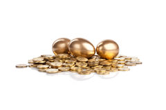 Three golden eggs on coins Stock Images