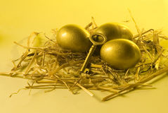 Three golden eggs and a key lying on straw. Golden eggs and key as a metaphor to success and solution Stock Photography