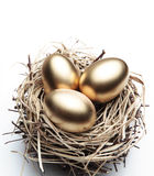 Three Golden Eggs in the Nest. On the White Background royalty free stock image