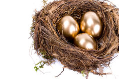 Three golden eggs in the nest. On white background Royalty Free Stock Image
