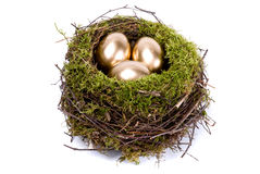 Three golden eggs in the nest. On white background Royalty Free Stock Photos