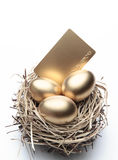 Three Golden Eggs in the Nest. With Credit Card stock images