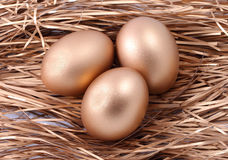 Three golden eggs on the nest Royalty Free Stock Photos