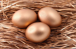 Three golden eggs in the nest Stock Images
