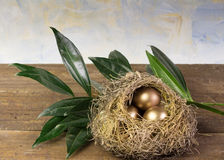 Three golden eggs in nest with cloud painted background Royalty Free Stock Photography