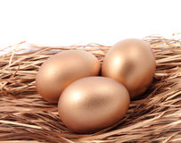 Three golden eggs in the nest isolated on white background Stock Image